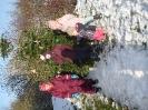 Weihnachtsbaumschmücken mit den Kindern